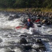 Duckies on the River Spey