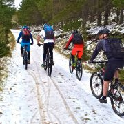 Active Mountain Biking