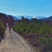 Active Mountain Biking