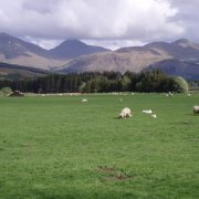 West Highland Way Adventure