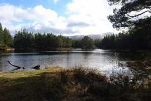 Cairngorm Adventure Journey