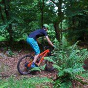 Trail Riding – Mtn Biking