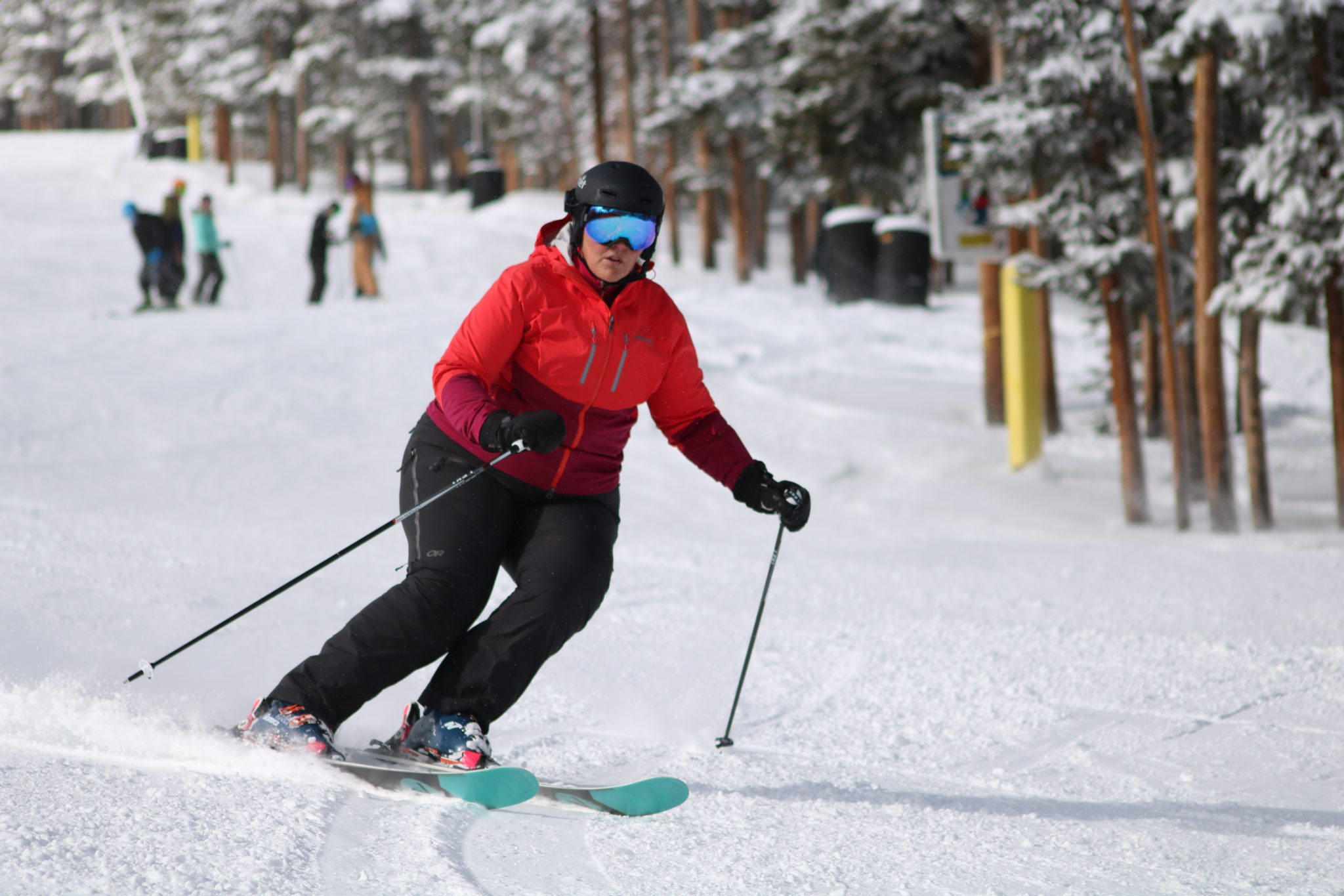 PSIA level 1 ski instructor qualification